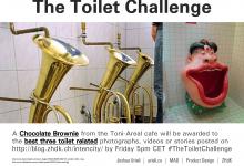 The Toilet Challenge
