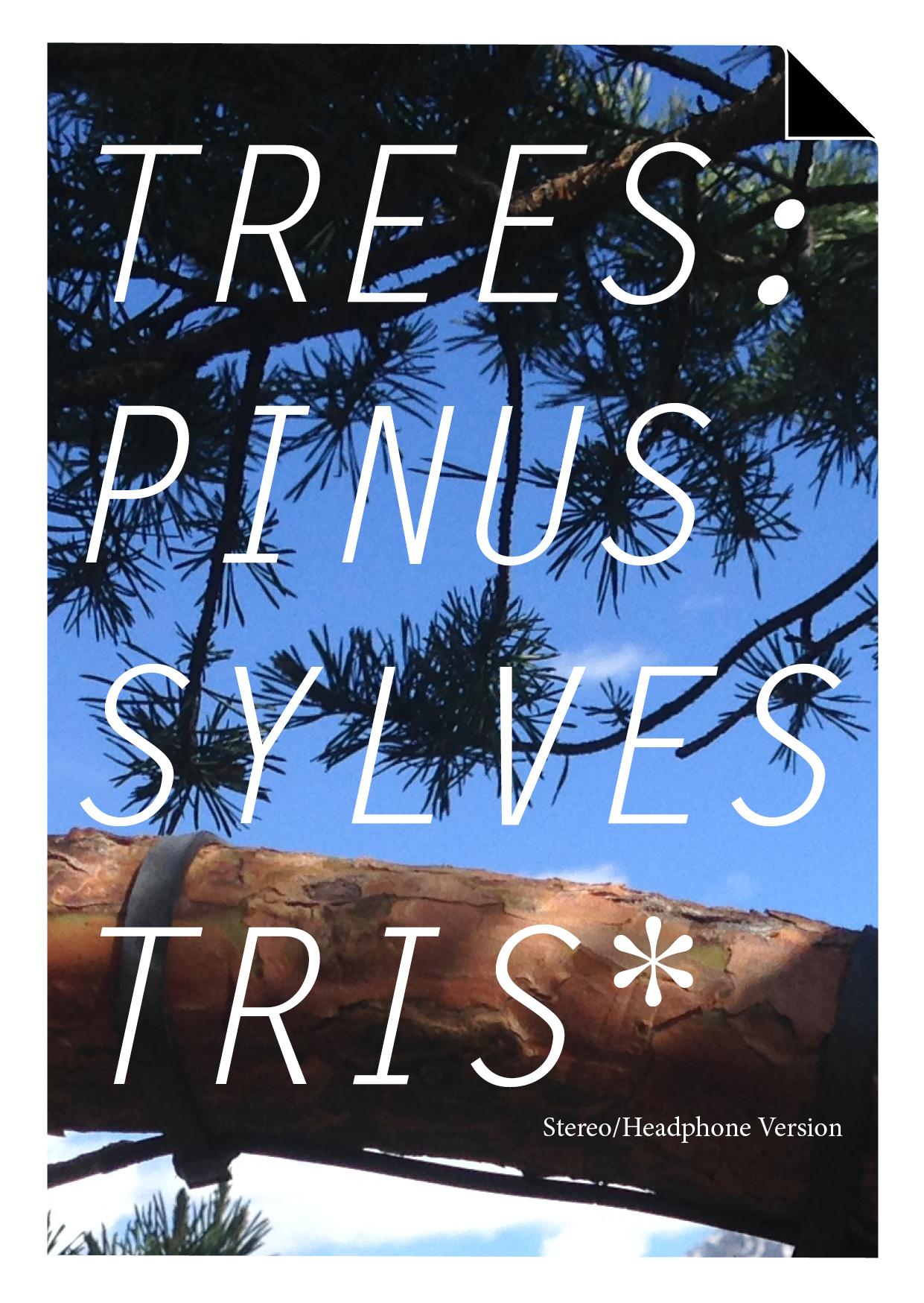 flyer_trees_wsl1