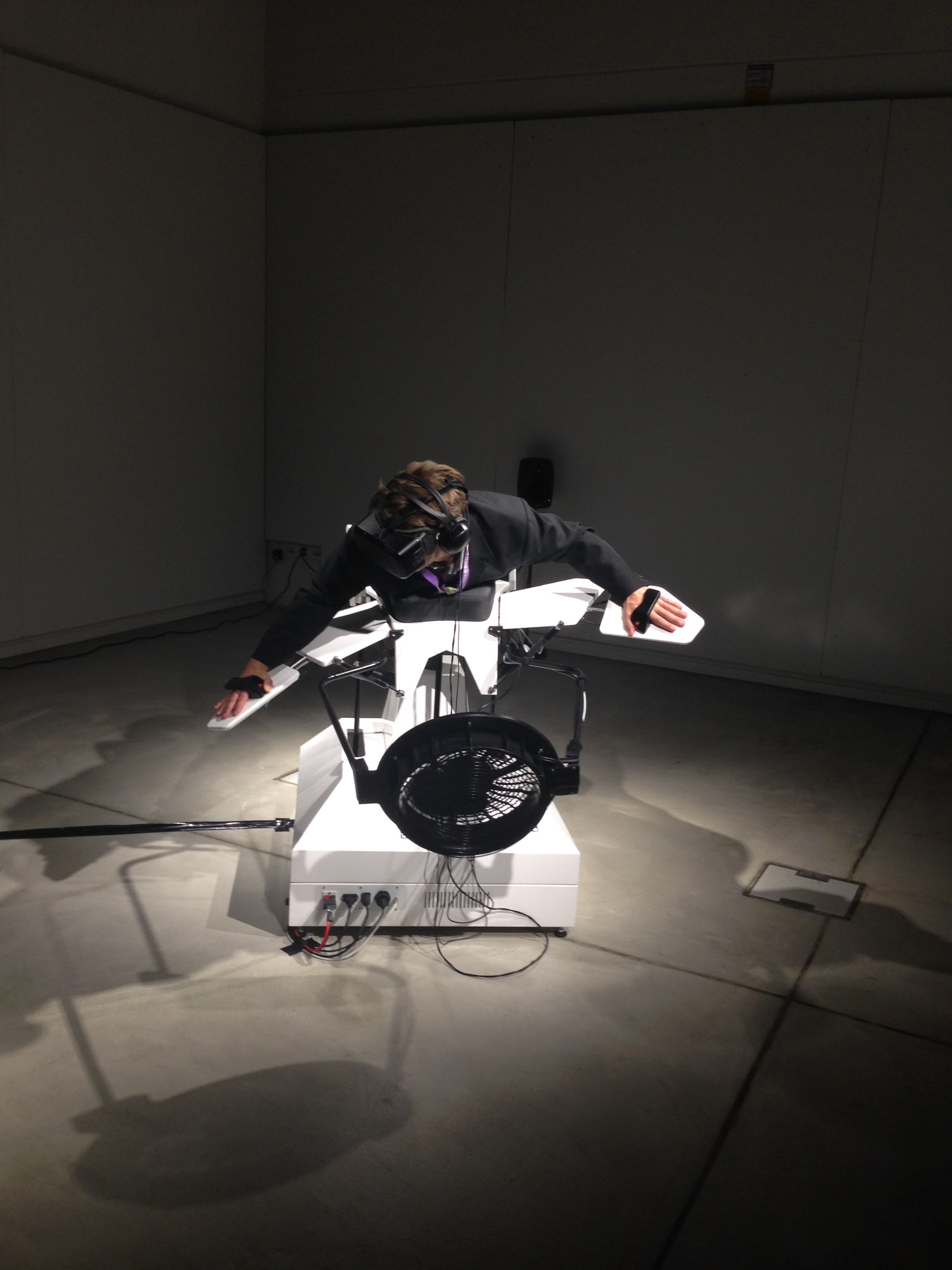 Roman Zweifel takes a flight with birdly