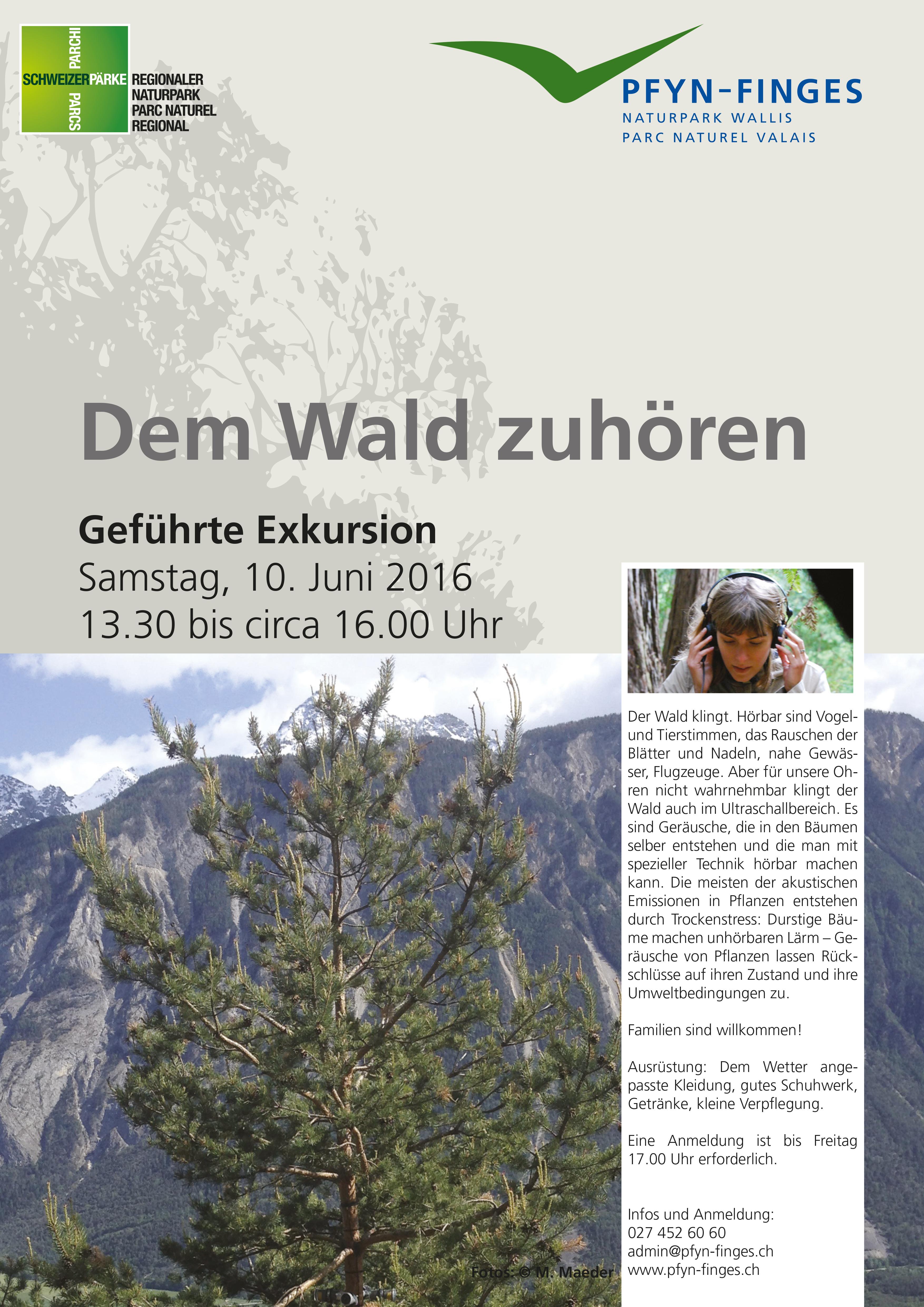 20170610_demwaldzuoehren_d