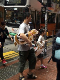swiss styles in HK